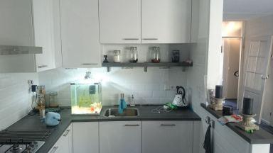 moderne witte keuken Wehl