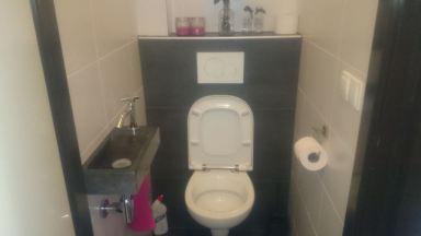 Renovatie toilet Didam