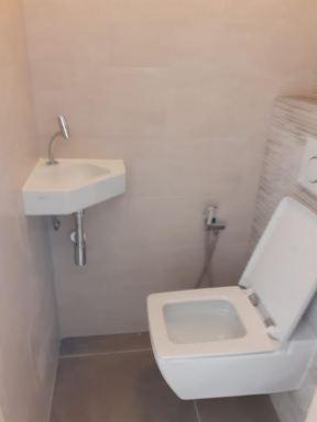 wc vernieuwt zoals de wanden, wasbakje en andere toiletpot in Dleft