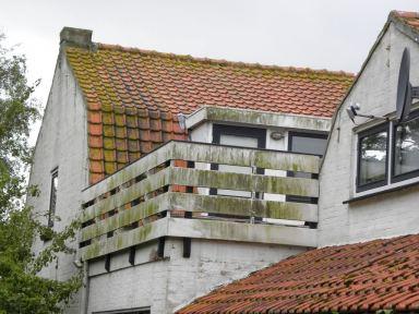 Oud Vossemeer