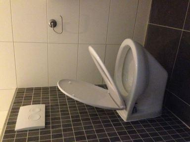 Nieuw toilet en tegelwerk gemonteerd te zoetermert