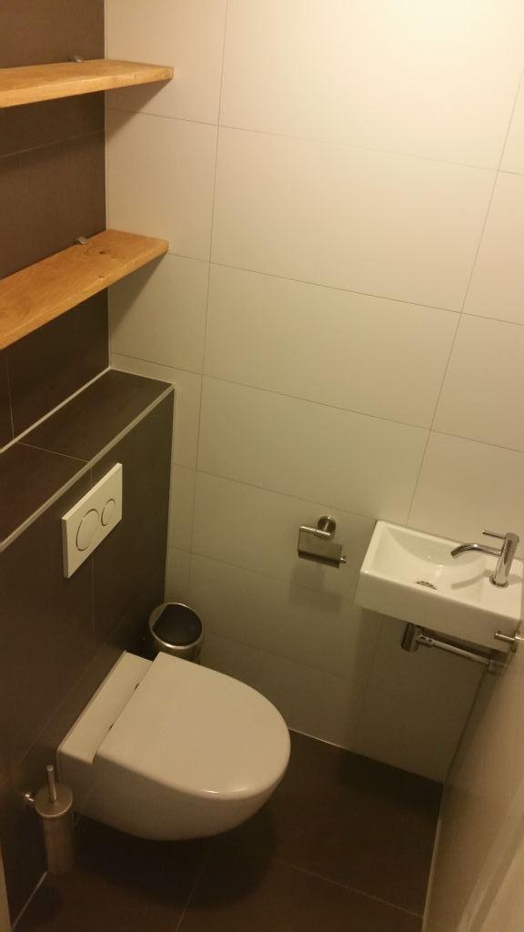 Toilet renovatie Druten, Maas en Waal