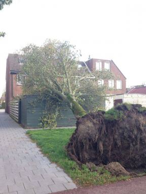 Stormschade houten schuur Lelystad incl. EPDM dakbedekking