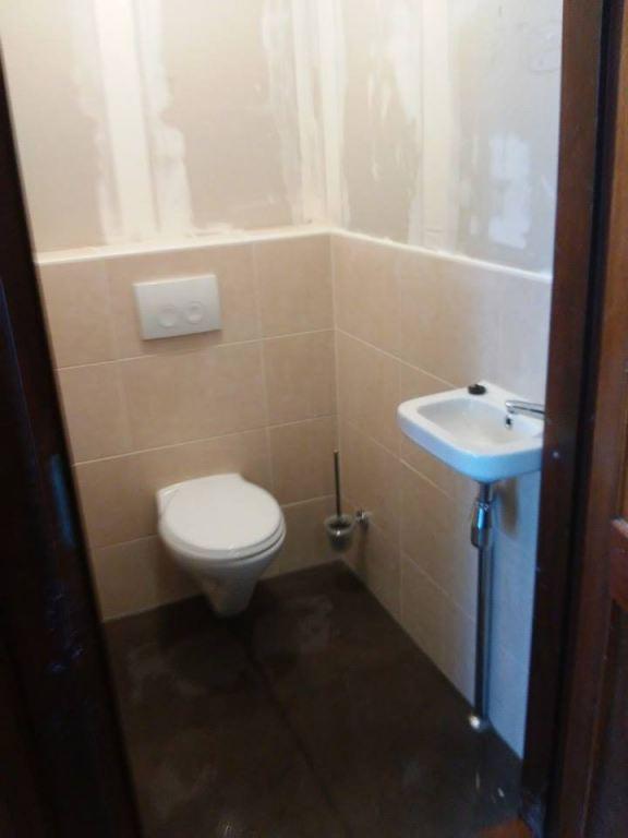 Toilet renovatie te Tzummarum