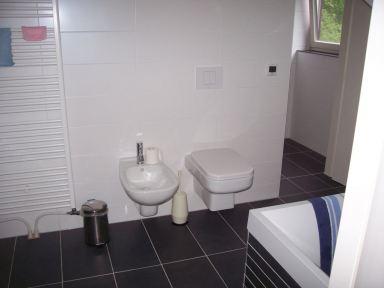 Een deel van een dubbele badkamer met toilet en bidet te Berg en Dal.
