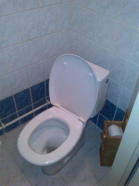 Toilet verbouwing Gouda