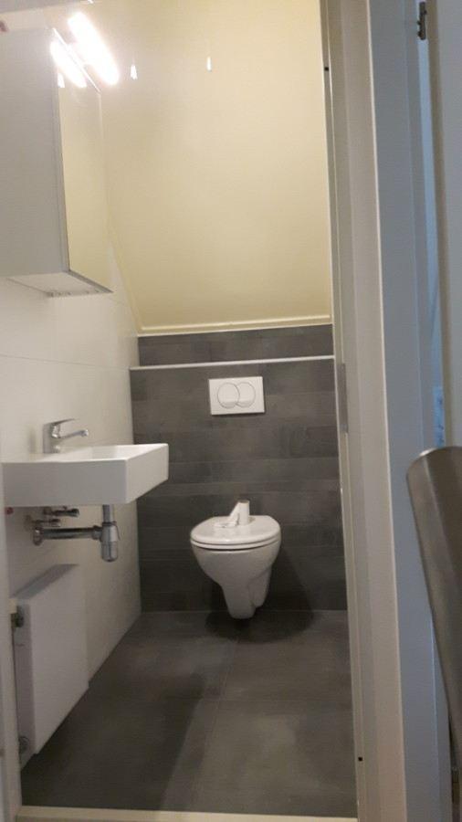 Badkamer verbouwen + Toilet renoveren Enter - De Klussenier Theo ...