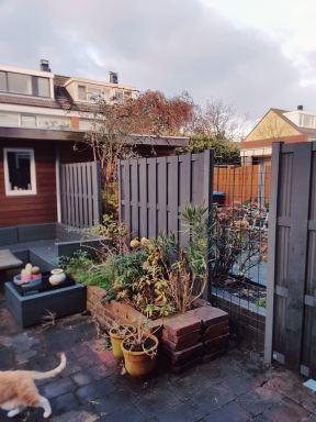 Kunststof schutting Velserbroek Haarlem