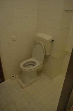 oud model verhoogde wc Almere
