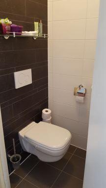 toilet renovatie Alphen a/d Rijn