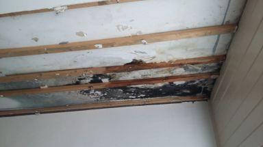 Plafond lekkage na wespennest Maassluis - voor