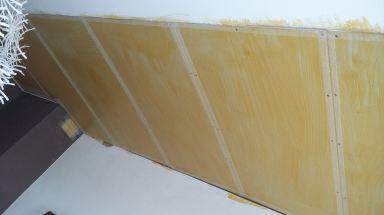 Plafond lekkage na wespennest Maassluis