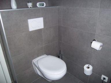 Toilet renovatie Affligem