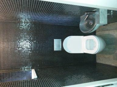 Renovatie toiletruimte Aalst