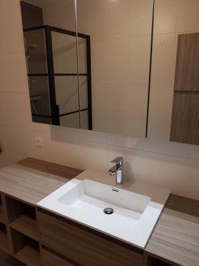 Plaatsen van douchescherm, badmeubel en spiegelkast te Schiedam